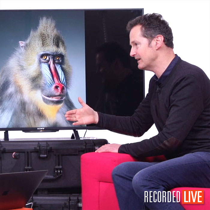 Live Talk Show – Animal Photographer Tim Flach